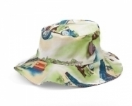 Transport  Hat