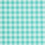 Aqua Picnic Fabric